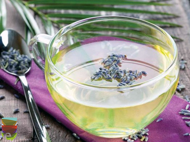 Read more about the article Lavanda e Passiflora